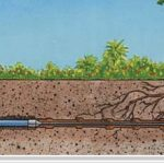 Sewer Pipe Replacement